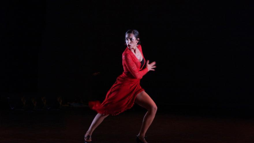 Artista en un paso de baile flamenco