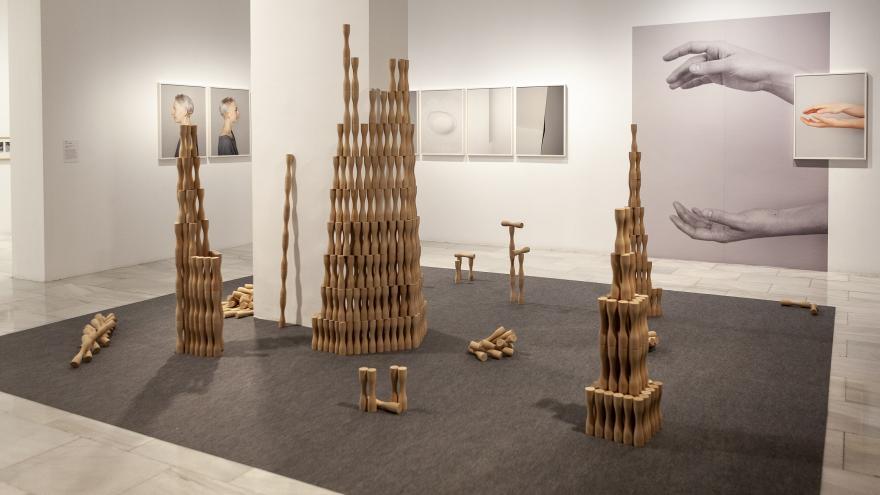 Una muestra de la exposición Circuitos de Artes Plásticas