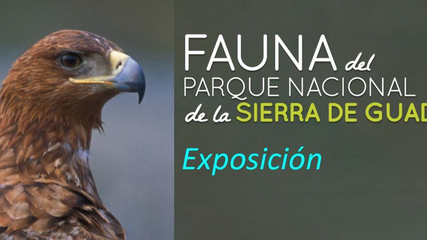 Exposición fauna del Parque Nacional