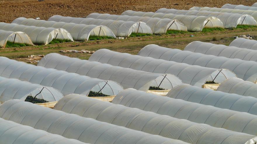Ayudas para el fomento de las inversiones en infraestructuras agrarias de uso común