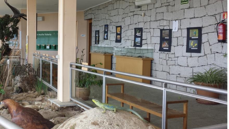 """Exposición """"Día y noche en la Sierra Oeste"""" en el Centro de educación ambiental El Águila"""