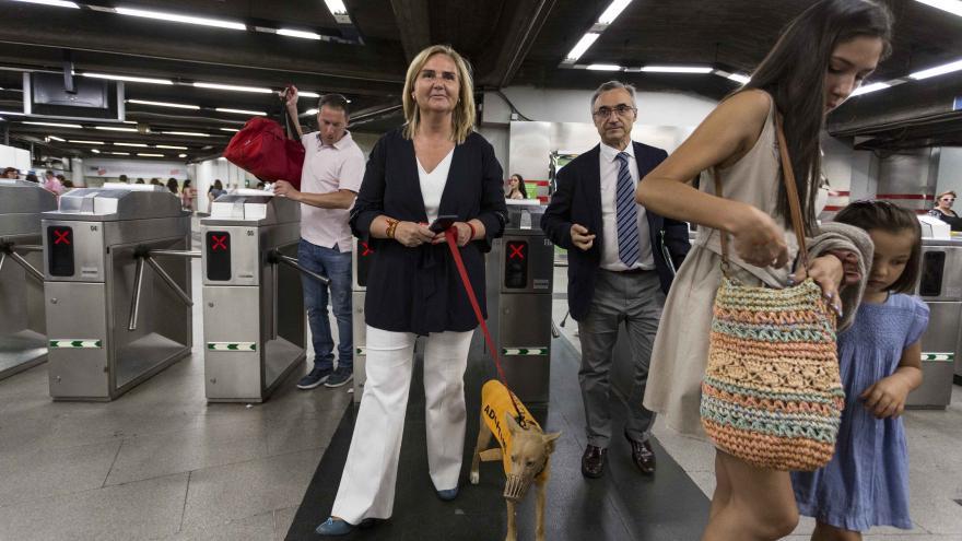 Acceso mascotas por el torno a Metro de Madrid