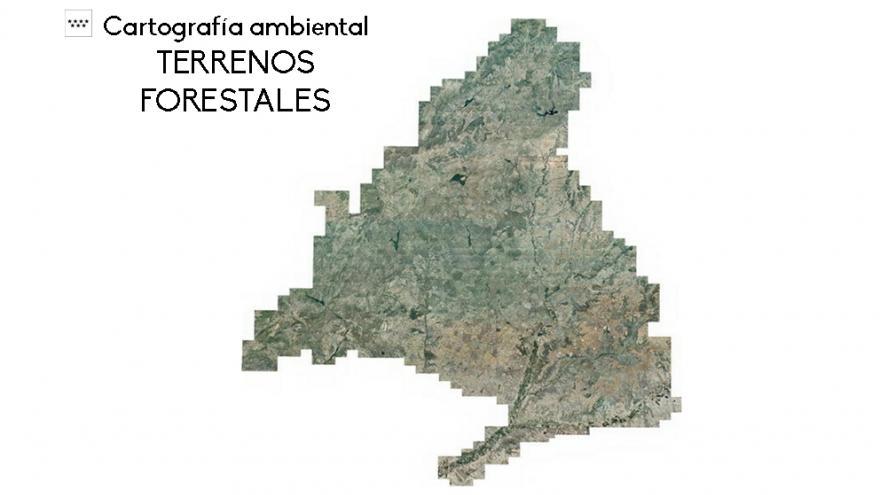 Mapa de Terrenos Forestales