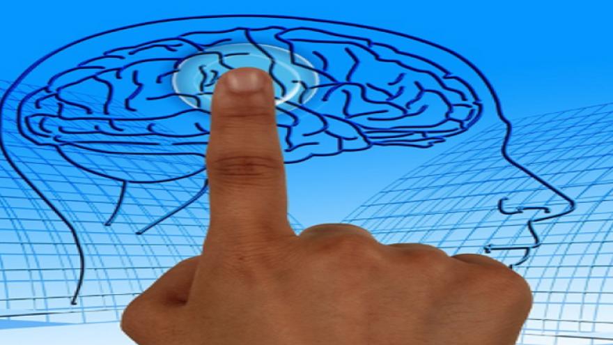 Dedo índice señalando el centro de un dibujo de un cerebro