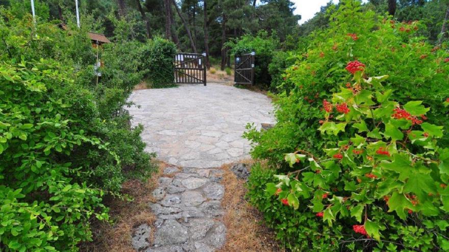 Entrada al Cea Arboreto Luis Ceballos