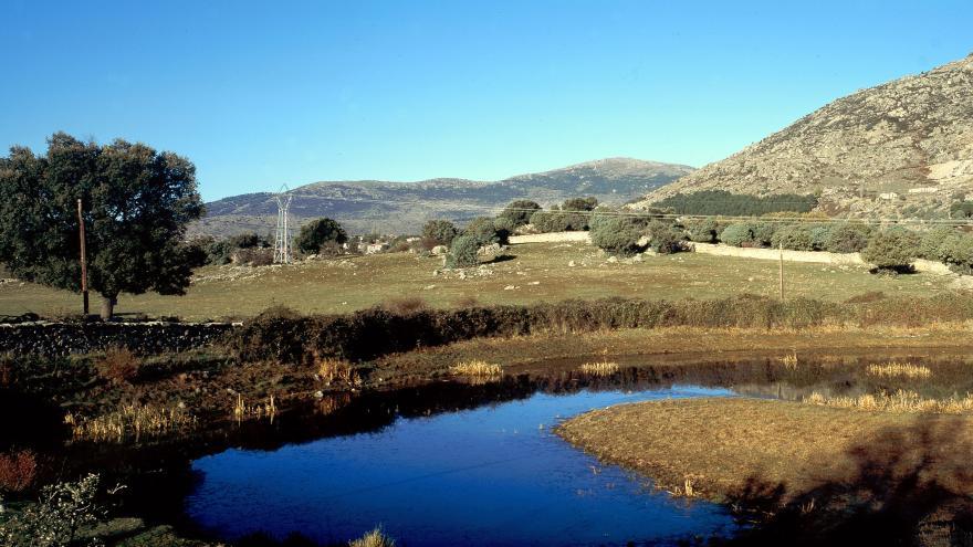 Humedales_Laguna de Castrejón_El Escorial