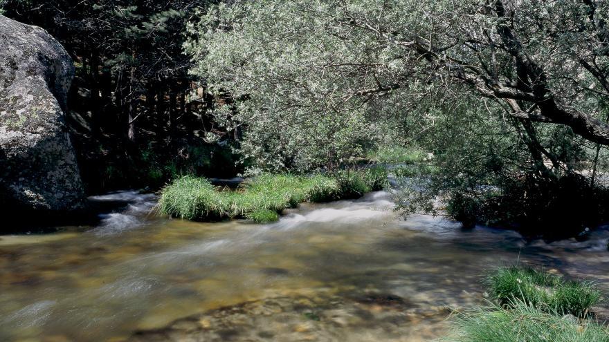 Río Manzanares en La Pedriza