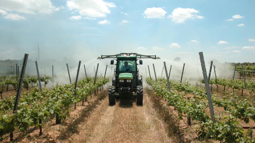 maquinaria en viñedo