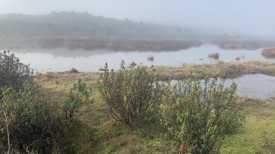 Laguna en Valdemanco