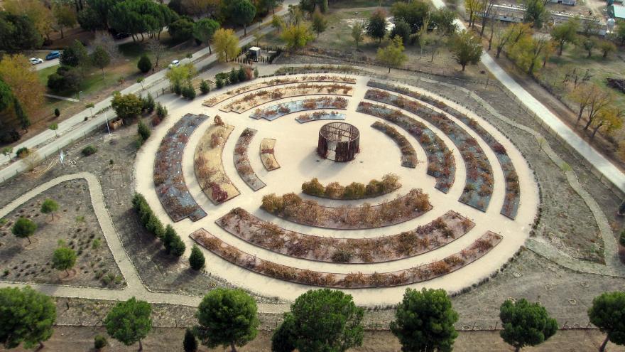 colección de vides en un recorrido circular