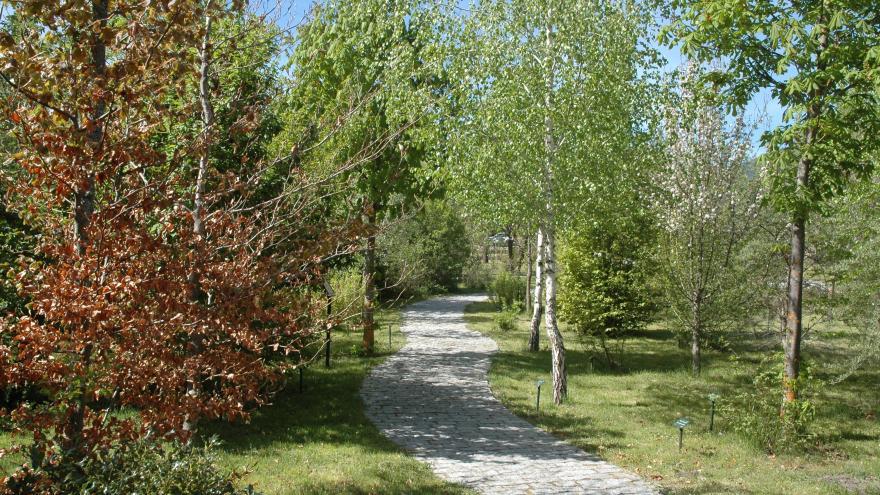 Arboreto Giner de los Ríos