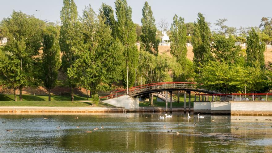 Parque Central, Tres Cantos