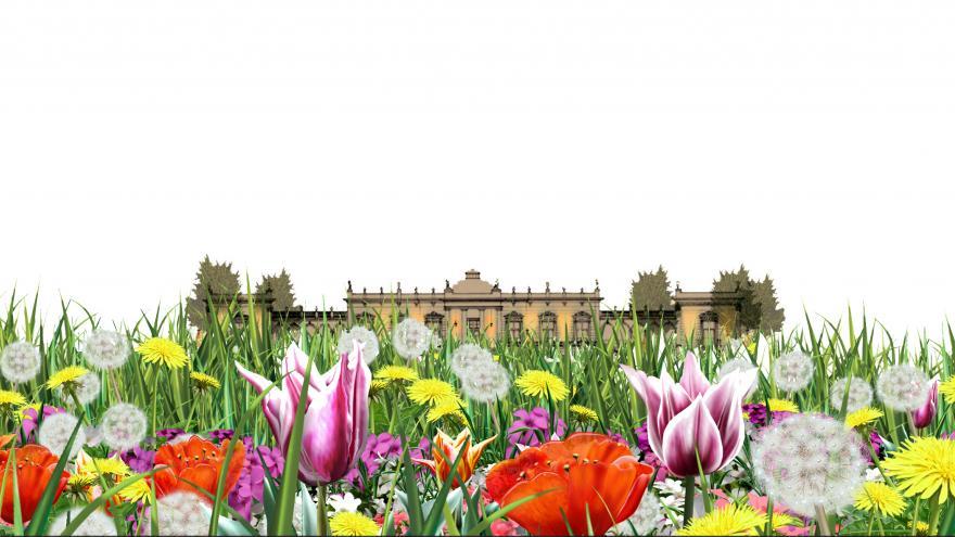 El jardín de Vista Alegre