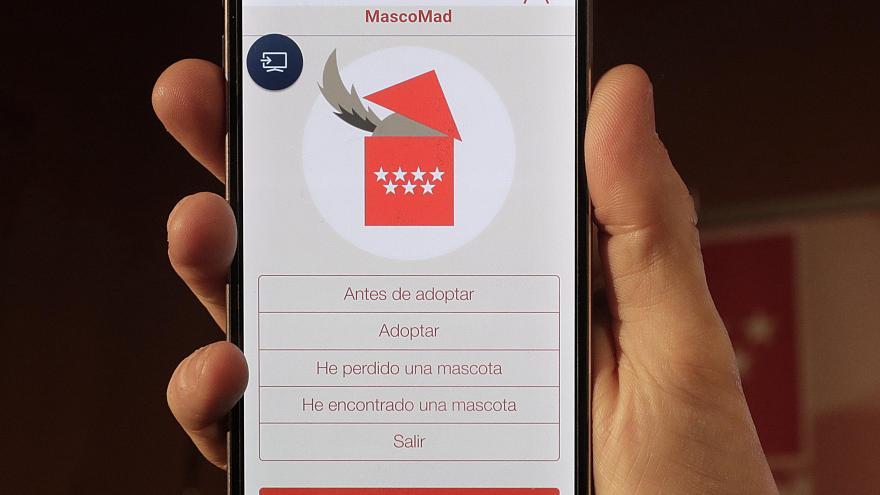 La Comunidad anima a utilizar la aplicación móvil Mascomad para adoptar mascotas abandonadas y recuperar a las extraviadas