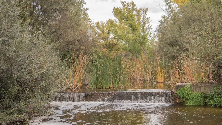 Tramo fluvial