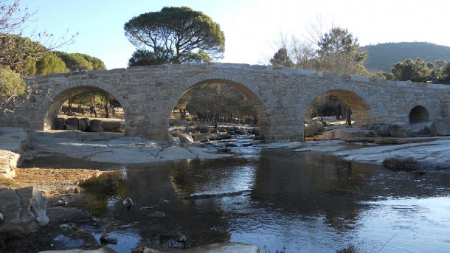 Puente sobre el río vegetación