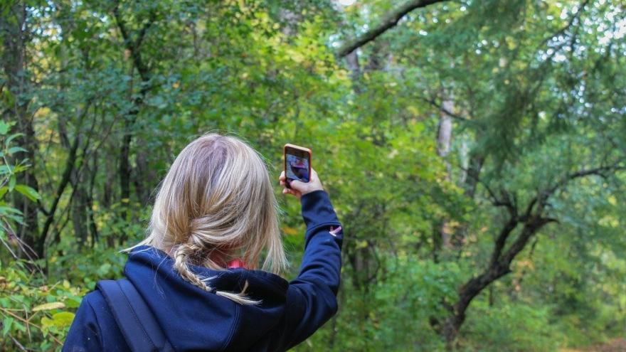 Chica con móvil en la naturaleza