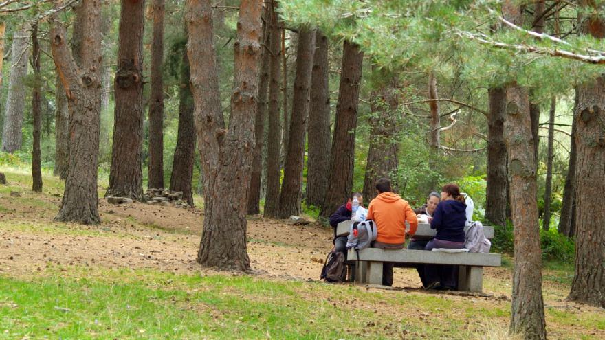 Grupo en área recreativa