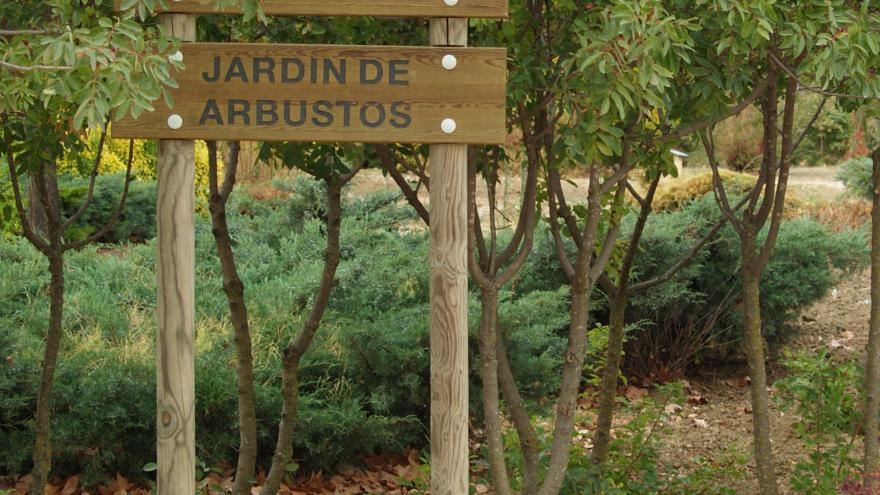 Jardín de arbustos Polvoranca