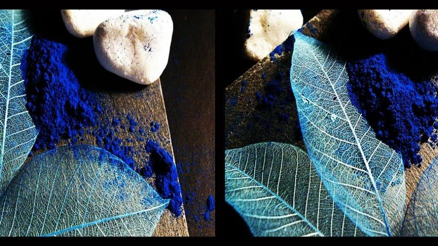 Hojas pigmento azul piedras
