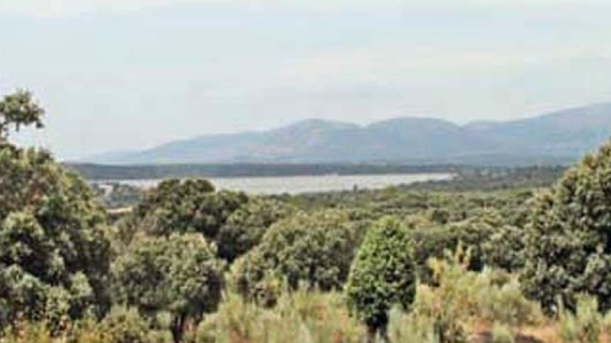 Vista de la senda de Colmenarejo a Valdemorillo
