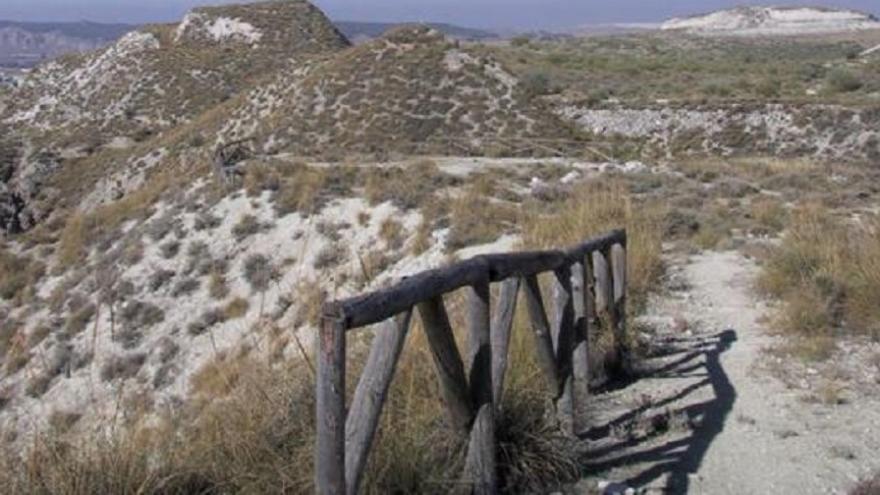 Senda en Rivas-Vaciamadrid