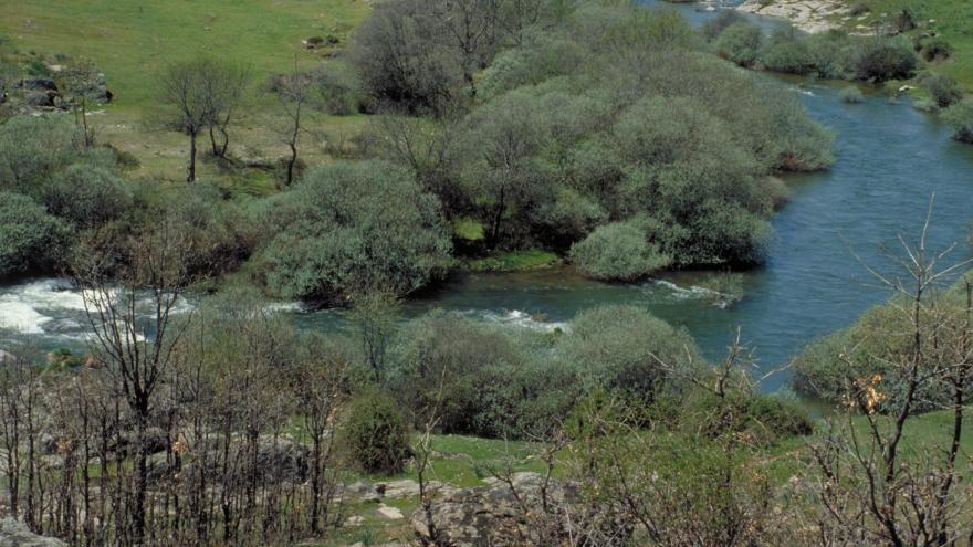 Valle del Lozoya río