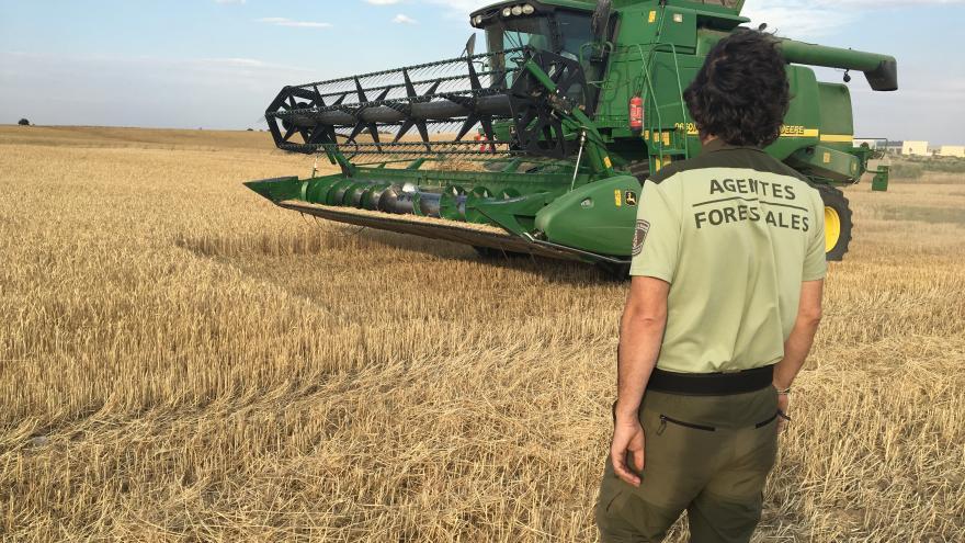 La Comunidad de Madrid pone en marcha un operativo para evitar los fuegos causados por las cosechadoras