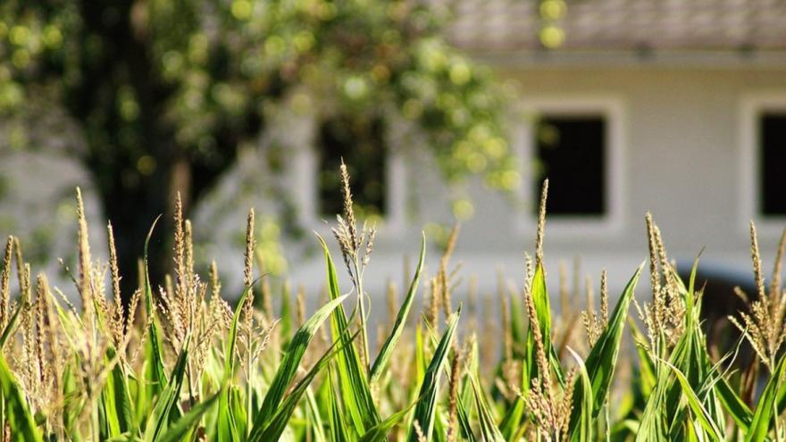 Imagen zona rural