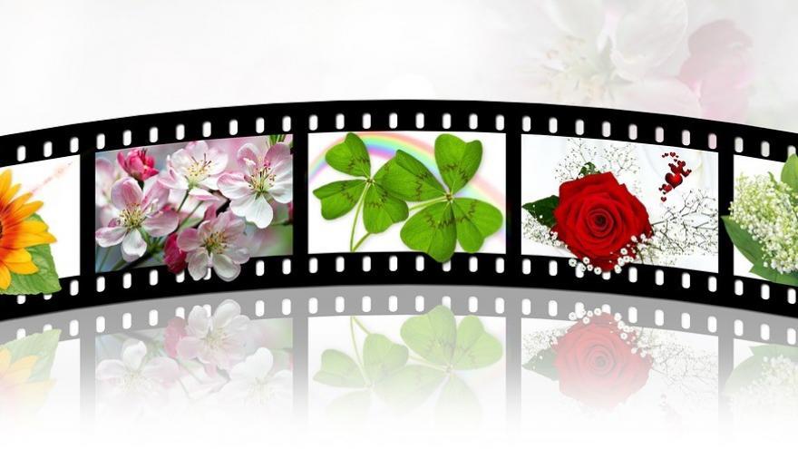 Película de cine y naturaleza
