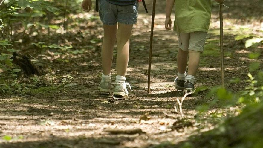 Niños caminando sendero