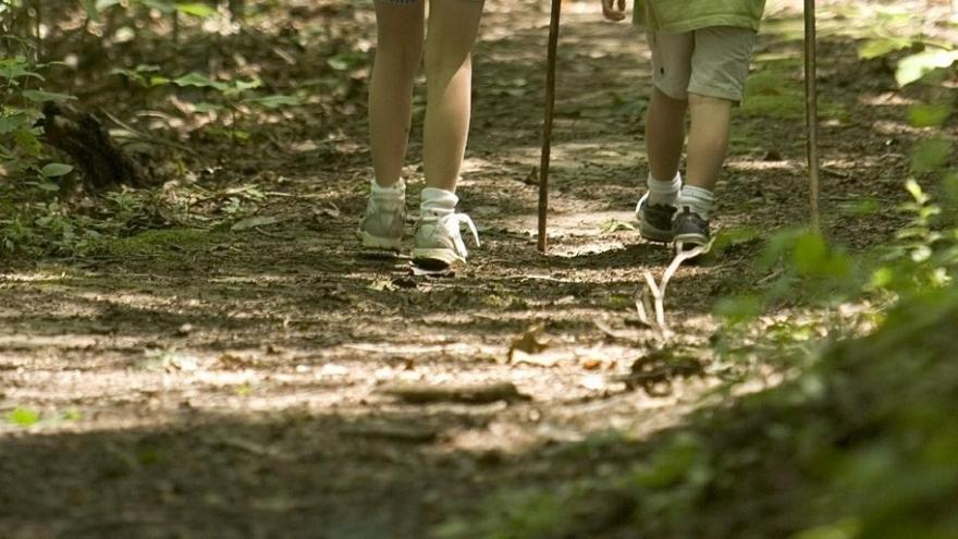 Niños caminando senda