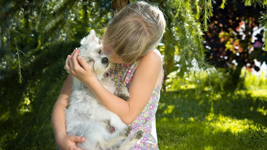 Imagen de una niña besando a su perro