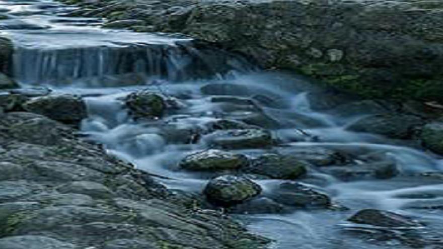 Arroyo con piedras