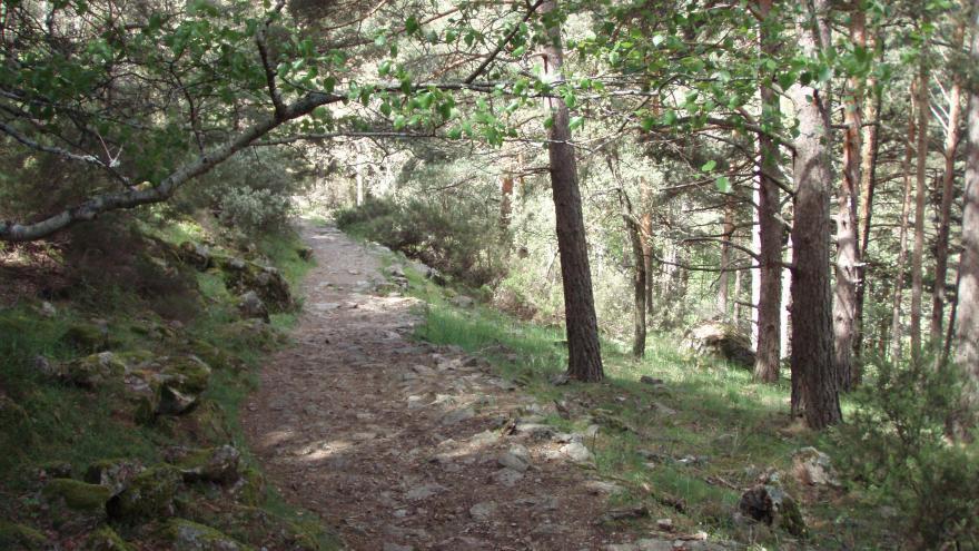 Ladera de Mojonavalle