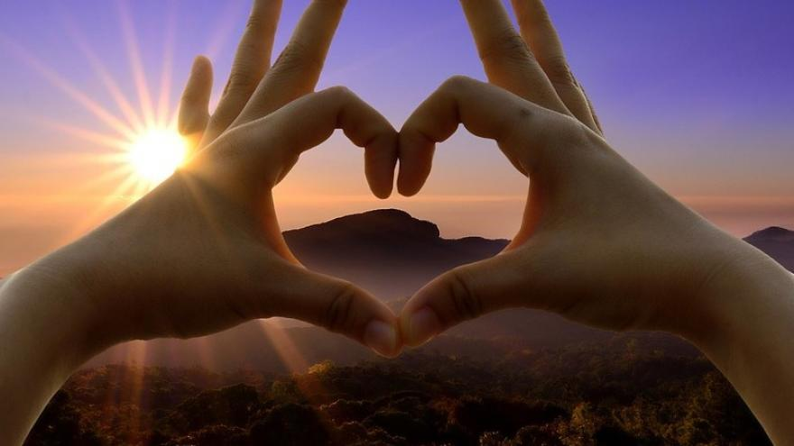 Manos corazón naturaleza