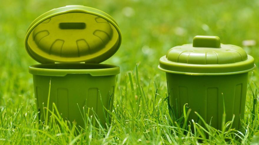 Cubos de basura sobre césped verde