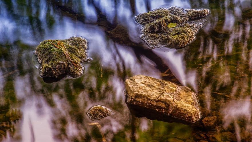 Paisaje agua madera piedra