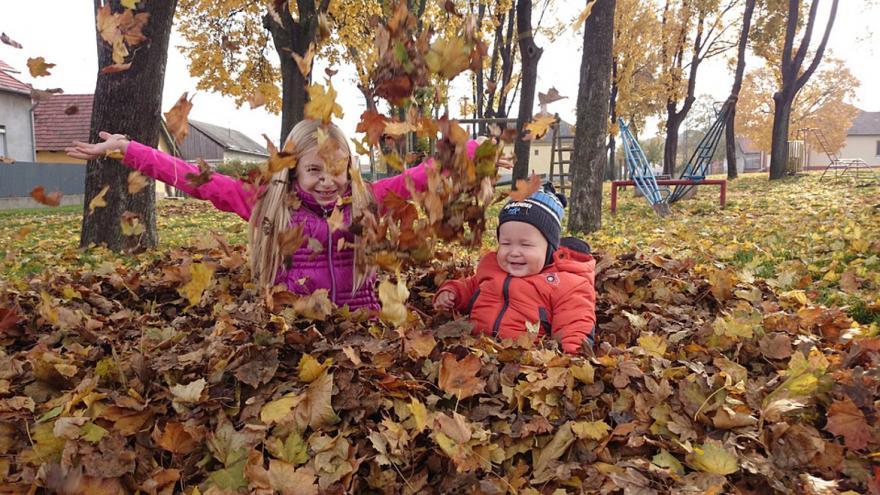 niños jugando con hojas caidas del árbol