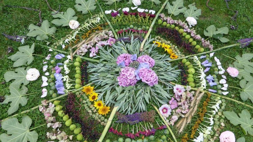 Mandala flores y hojas