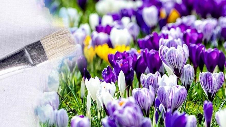 Pincel flores colores