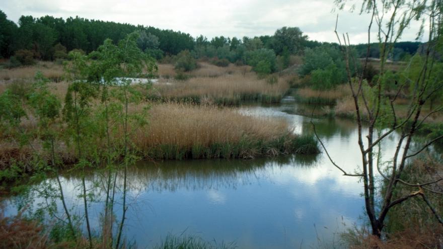 Vista río en Parque Regional del Sureste