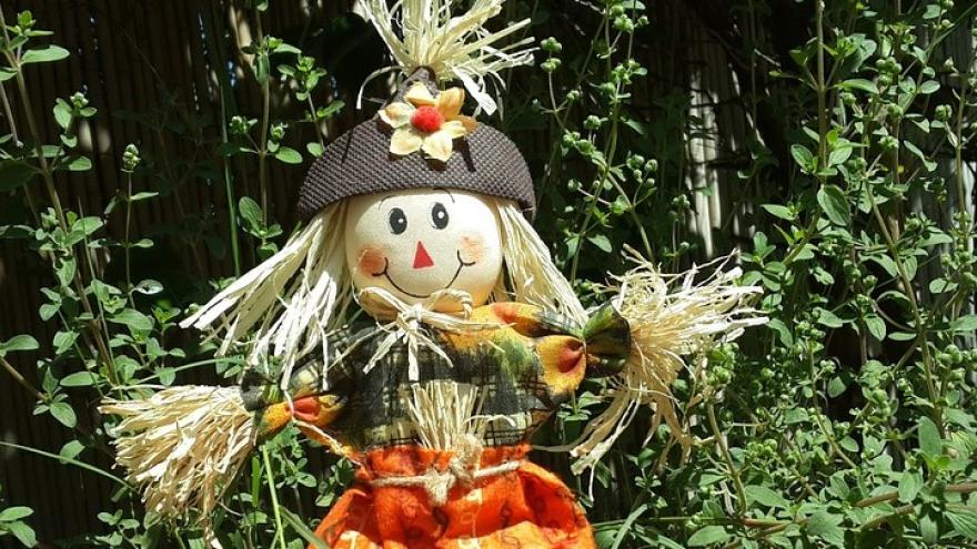 Muñeca espantapájaros huerto