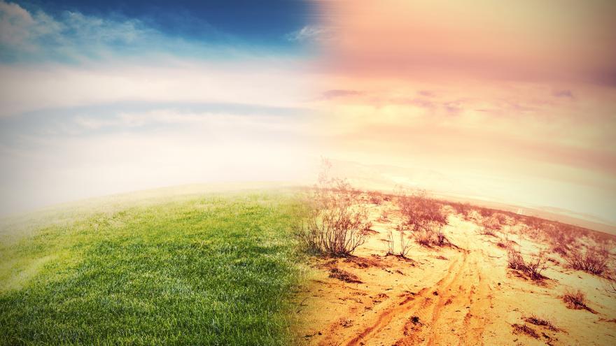 Una imagen icónica del planeta Tierra en la que la mitad del mismo está verde y la otra mitad desierto