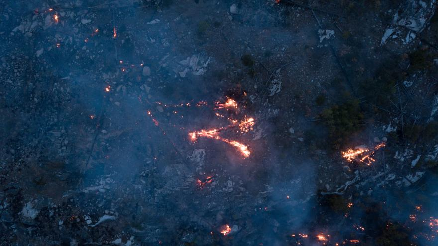 Terreno quemado después de un incendio