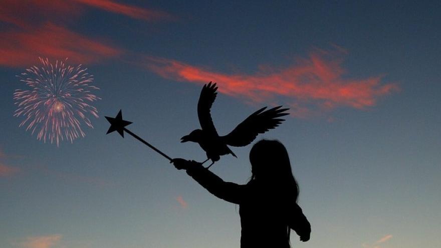 Varita mágica y ave