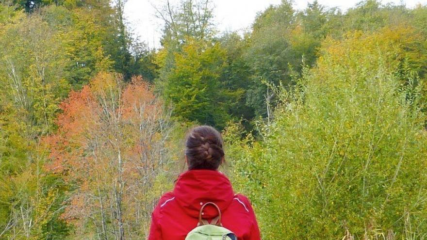 Una senderista contemplando la naturaleza