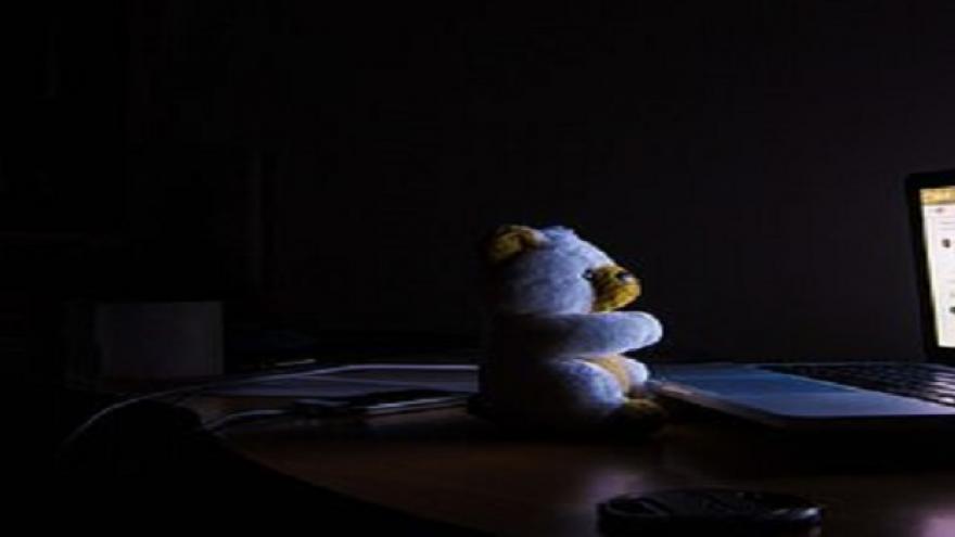 Oso de peluche mirando pantalla de ordenador por la noche
