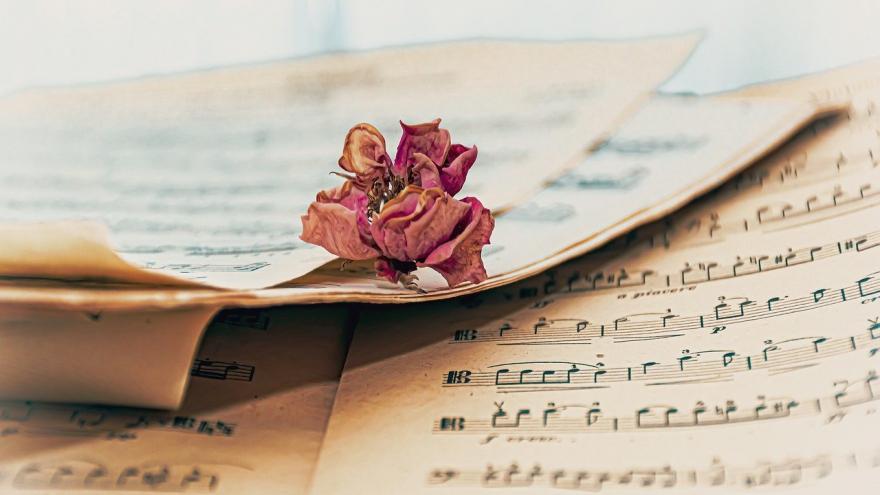 Hoja de música y rosa seca