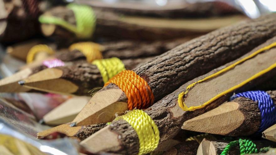 Lapiceros tronco árbol
